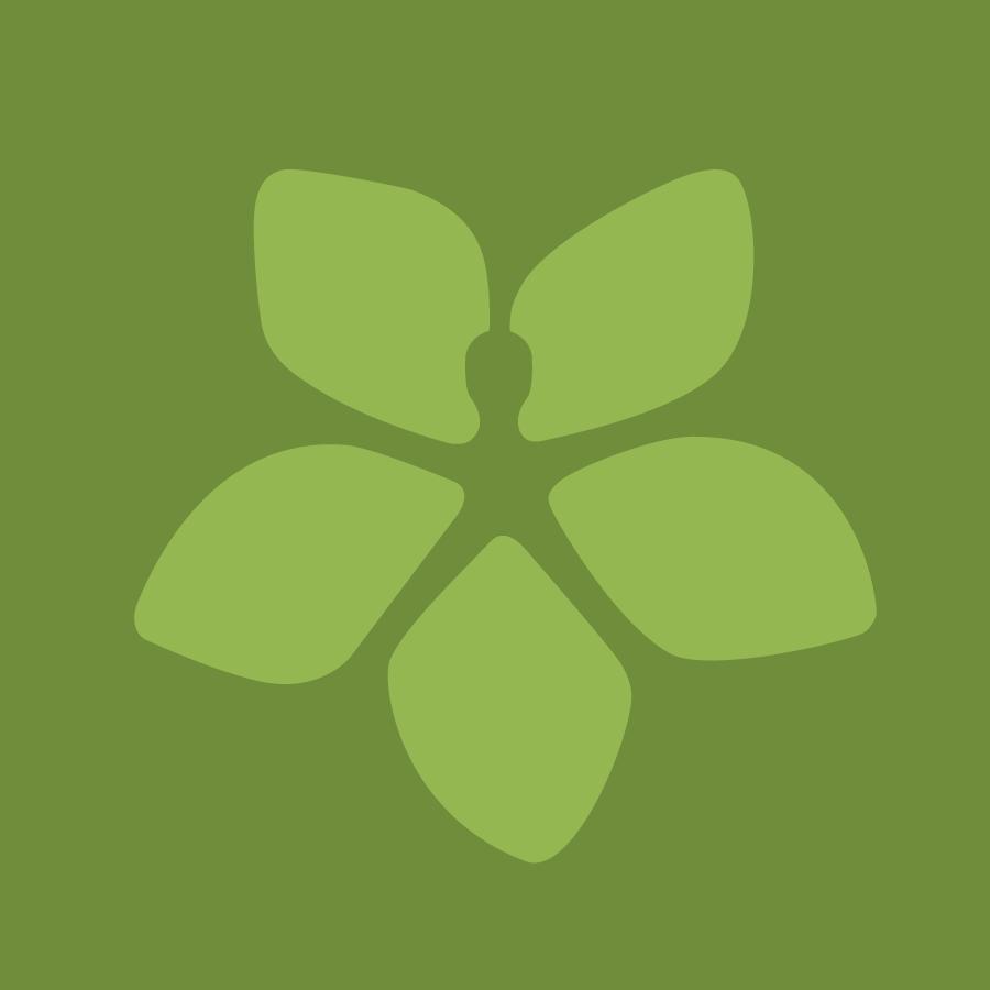 HSS logo flower on green background