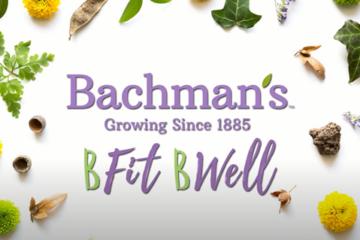 bacmans wellness program
